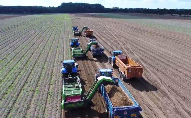 La superficie de pommes de terre en France devrait augmenter cette saison - Potato News Today
