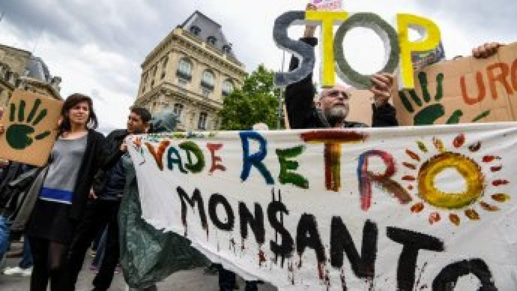 Thousands gather in France, worldwide for annual march against Monsanto