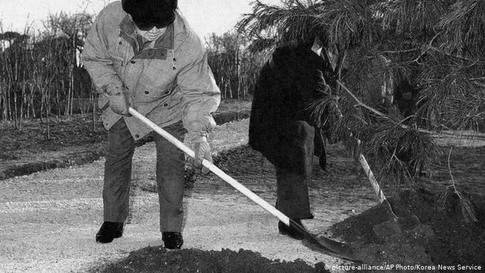 Le dirigeant nord-coréen Kim Jong Il a planté un arbre en 2004.