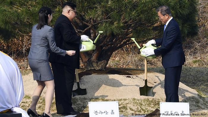 Le dirigeant nord-coréen Kim Jong Un et le président sud-coréen Moon Jae-in arrosant un arbre près de la ligne de démarcation militaire séparant les deux pays