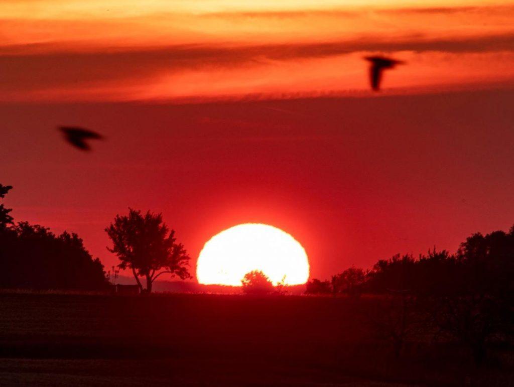 Alertes émises en France sous forme d'enveloppes de chaleur intense Europe   Nouvelles du monde