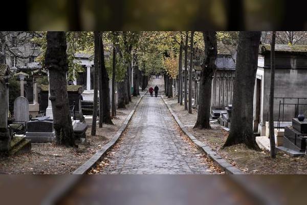 Emirates News Agency - La France va créer un espace de cimetière écologique