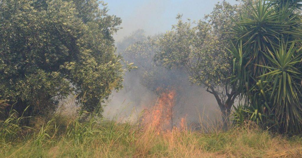 Incendies de forêt en France: des milliers de touristes évacués des campings prisés des Britanniques - World News