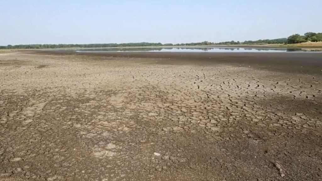 Des poissons hors de l'eau alors que le lac s'assèche en France
