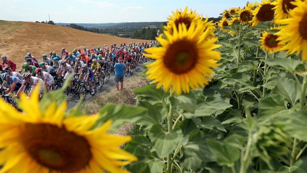 Egan Bernal remporte le Tour de France - ABC 36 News - WTVQ