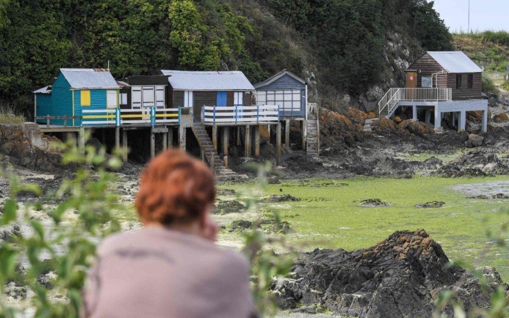 Les vacanciers avertis de la présence d'algues toxiques sur les plages françaises après deux décès en une semaine
