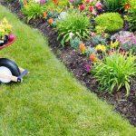 Abattagefacile : entretenir son jardin