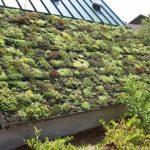5 types de base de matériaux de toiture