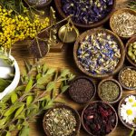 Les 10 meilleures herbes médicinales