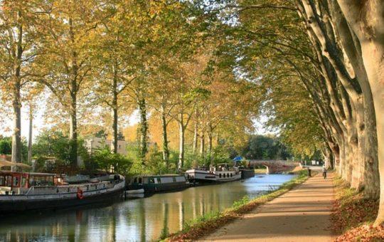 Toulouse rives